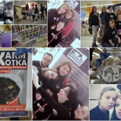 Mikołajkowa zbiórka 2016 – dziękujemy!