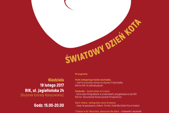 Światowy Dzień Kota 2017