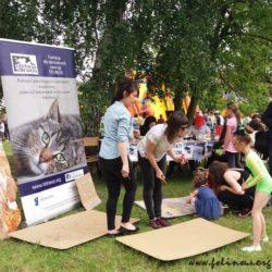 Staroniwski Piknik Sportowy – fotorelacja