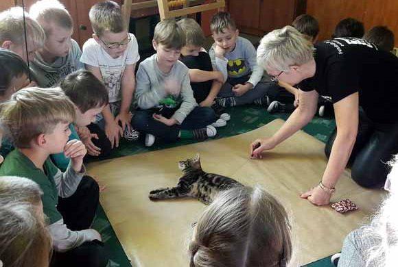 Lekcje edukacyjne w Szkole Podstawowej nr 2 w Sędziszowie Małopolskim