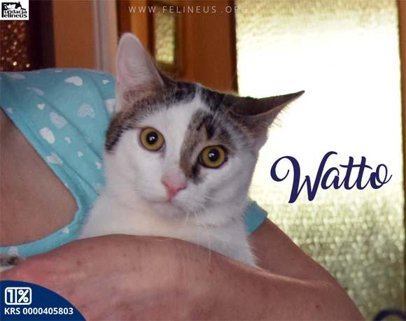 Watto