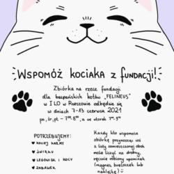 Wspomóż kociaka z Fundacji w  I LO w Rzeszowie