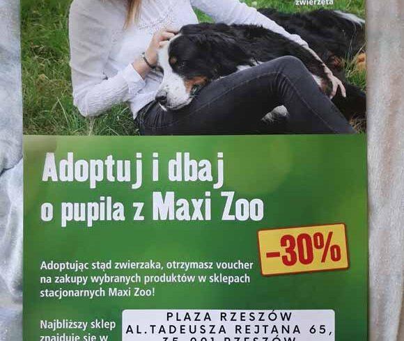 """Akcja MAXI-ZOO """"Voucher za adopcję zwierzaka"""""""