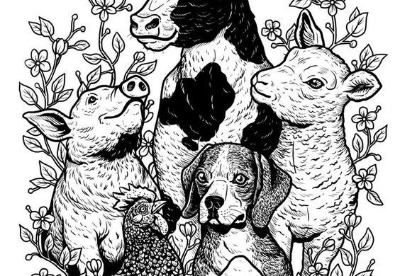 Hiszpania, zwierzęta i prawo.